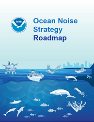 Ocean Noise Strategy Cover